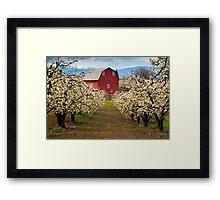 Red Barn Spring Framed Print