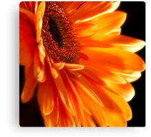 Orange Explosion Canvas Print