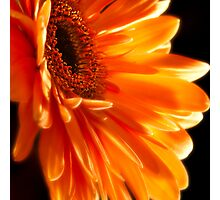 Orange Explosion Photographic Print