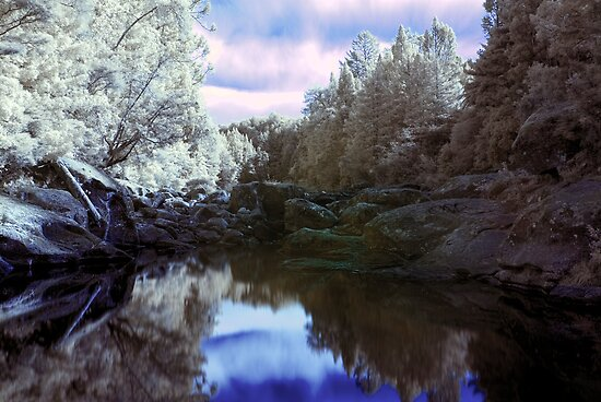 Wairoa River infrared by Paul Mercer