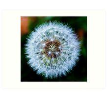 Ethereal Dandelion Art Print
