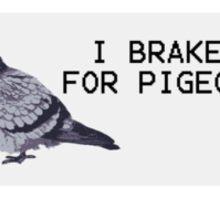 I brake for pigeons Sticker