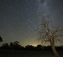 Starry Nights by Arthur Koole