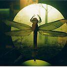 Writhlington Dragonfly by nigglebyleaf