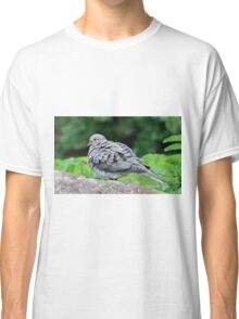 Turtle Dove Classic T-Shirt