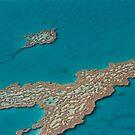 Great Barrier Reef North Queensland © Vicki Ferrari Photography by Vicki Ferrari