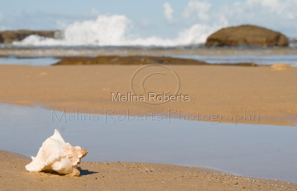 By the Seaside by Melina Roberts
