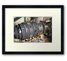 They love a Sigma lens...... Framed Print