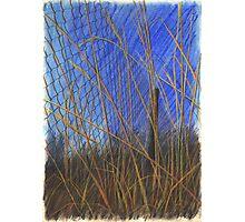 WindSieb Photographic Print