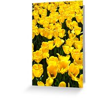 They were all Yellow Greeting Card