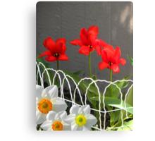 Garden Gifts Canvas Print