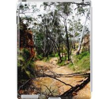 Golden Gully, Hill End, NSW iPad Case/Skin