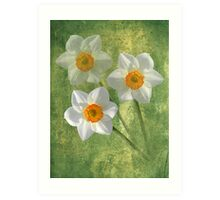 Three For Spring Art Print
