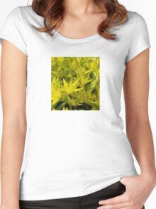 Neon Macro Succulent  Women's Fitted Scoop T-Shirt