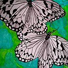 Two Butterflies Over the Water by ciriva