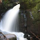 Amphitheatre Falls, Gippsland by Fiona Kersey