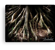 Touching the Earth Canvas Print