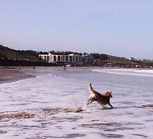 saz hopping the sea by xxnatbxx