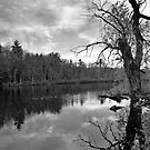 Catskills Lake by Jeff Notti