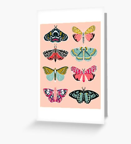 Lepidoptery No. 1 by Andrea Lauren  Greeting Card