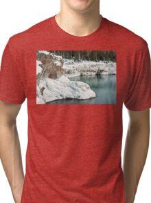 Frozen Lake Shore Tri-blend T-Shirt