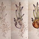 Asparagus Heart progress by Fay Helfer