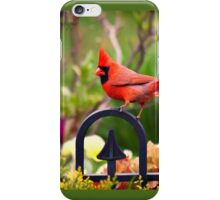 Male Red Cardinal in the Garden iPhone Case/Skin