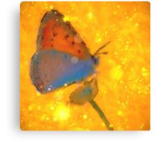 Butterfly on Gold Canvas Print