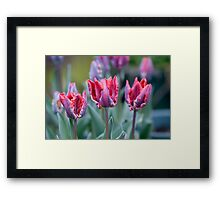 Three Crowns Framed Print
