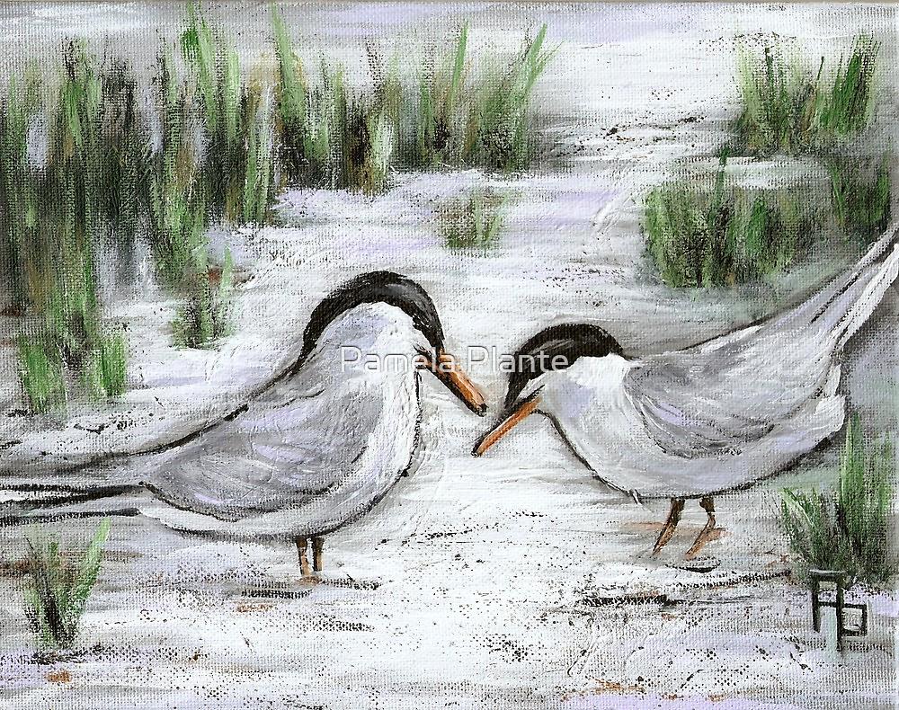Terns on Cape Cod by Pamela Plante