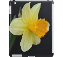 Daffodil Three-Quarter View iPad Case/Skin