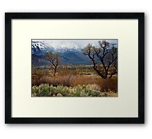 Bishop Meadow Framed Print