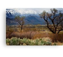 Bishop Meadow Canvas Print