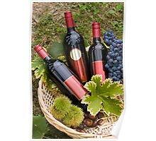 Red wine bottles Poster