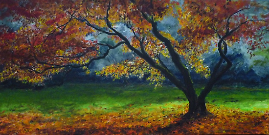 My love of trees IV by lizzyforrester