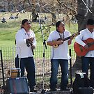 Music In The Park by Martin Dingli