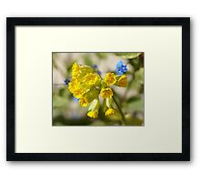 Summers Here Framed Print