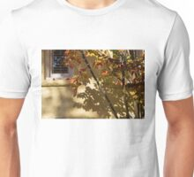 Washington, DC Facades - Dupont Circle Neighborhood - Playing with Shadows Unisex T-Shirt