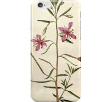The Botanical magazine, or, Flower garden displayed by William Curtis V3 V4 1790 1791 0009 Epilobium Angustissimum, Narrowest Leaved Willow Herb iPhone Case/Skin