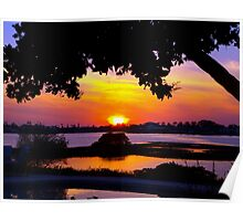 Sunset under two canopies Poster
