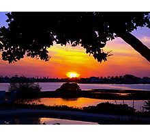 Sunset under two canopies Photographic Print