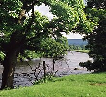 River Wharfe at Bolton Abbey. by Brunoboy