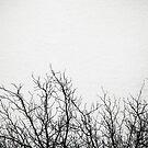 bäume im schnee by codswollop