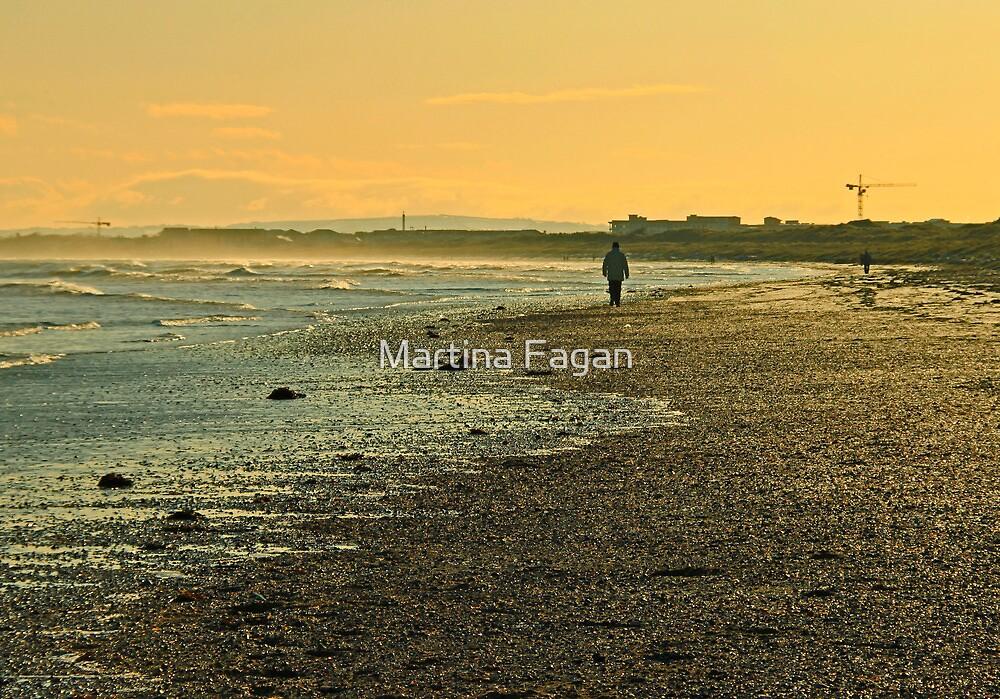 Mornington walk by Martina Fagan