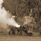 Southern artillary sepia by Larry  Grayam
