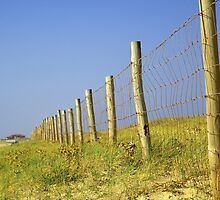 Infinite fence in dunes... by shkyo30