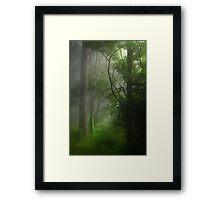 Good morning, sunshine #2 Framed Print
