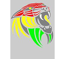 Reggae Music Cool Lion Reggae Colors T Shirts and Stickers Photographic Print