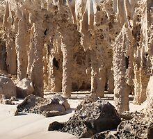 beach pinicles jurien bay by garyi