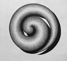 Koru by Scott Ritchie